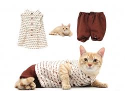 Коллекция для кошек